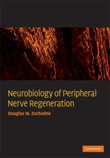 Neurobiology of Peripheral Nerve Regeneration | Douglas W. Zochodne |