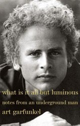 What Is It All but Luminous | Art Garfunkel |