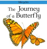 The Journey of a Butterfly | Carolyn Scarce |