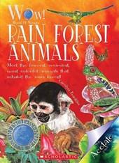 Rain Forest Animals!