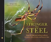 Stronger Than Steel | Bridget Heos |
