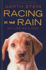 Racing in the Rain | Garth Stein |