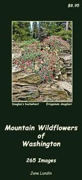 Mountain Wildflowers of Washington