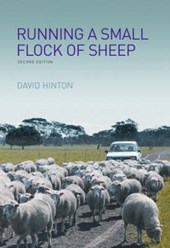 Running a Small Flock of Sheep