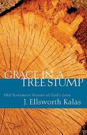 Grace in a Tree Stump