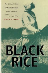 Black Rice - The African Origins of Rice Cultivation in the Americas | Judith A Carney |
