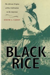 Black Rice - The African Origins of Rice Cultivation in the Americas | Judity A. Carney |