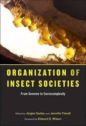 Organization of Insect Societies - From Genome to  Sociocomplexity | Jurgen Gadau |
