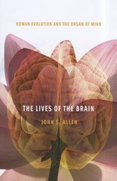 The Lives of the Brain - Human Evolution and the Organ of Mind | John S. Allen |