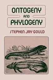 Ontogeny & Phylogeny (Paper)