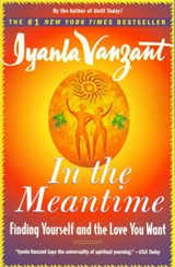 In the Meantime | Iyanla Vanzant |