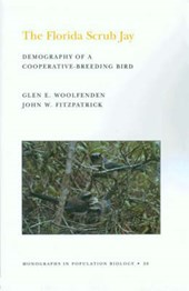 The Florida Scrub Jay (MPB-20), Volume 20 - Demography of a Cooperative-Breeding Bird. (MPB-20) | Glen E. Woolfenden; John W. Fitzpatrick |