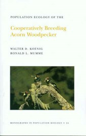 Population Ecology of the Cooperatively Breeding Acorn Woodpecker. (MPB-24), Volume 24