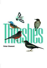 Thrushes | Peter Clement |