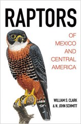 Raptors of Mexico and Central America | Clark, William S. ; Schmitt, N. John |