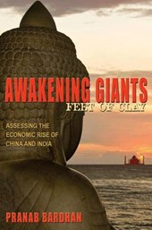Awakening Giants, Feet of Clay - Assessing the Economic Rise of China and India
