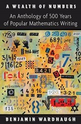 A Wealth of Numbers - An Anthology of 500 Years of Popular Mathematics Writing | WARDHAUGH,  Benjamin |