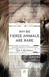 Why big fierce animals are rare | Paul Colinvaux |