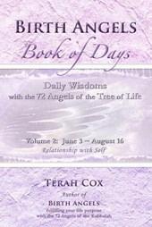 Birth Angels Book of Days - Volume 2