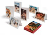 Luxury and  Decadence Greeting Cards