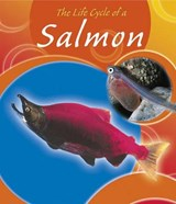 The Life Cycle of a Salmon | Lisa Trumbauer |
