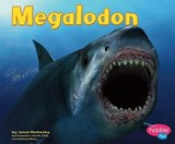 Megalodon | Janet Riehecky |