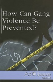 How Can Gang Violence Be Prevented?