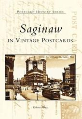 Saginaw in Vintage Postcards