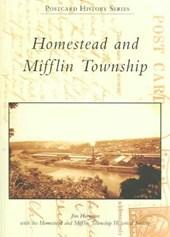 Homestead and Mifflin Township
