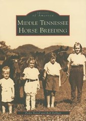 Middle Tennessee Horse Breeding