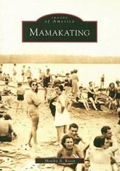 Mamakating