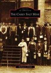 The Carey Salt Mine | Barbara C. Ulrich |
