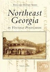 Northeast Georgia in Vintage Postcards