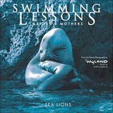 Swimming Lessons | Steve Creech |