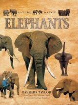 Elephants | Barbara Taylor |