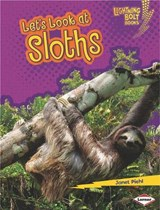Let's Look at Sloths | Janet Piehl |