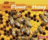 From Flower to Honey | Robin Nelson |