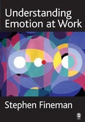 Understanding Emotion at Work