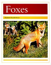 Nocturnal - Foxes, Student Reader
