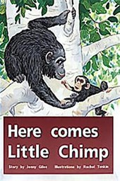 Here Comes Little Chimp