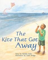 The Kite That Got Away