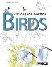 Sketching & Illustrating Birds