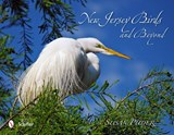 New Jersey Birds and Beyond | Susan Puder |