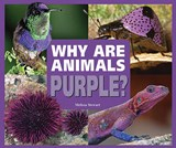 Why Are Animals Purple? | Melissa Stewart |
