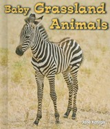 Baby Grassland Animals | Jane Katirgis |