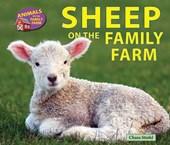 Sheep on the Family Farm