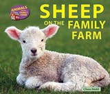 Sheep on the Family Farm | Chana Stiefel |