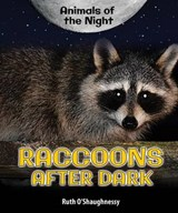 Raccoons After Dark | Ruth O'shaughnessy |