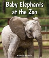 Baby Elephants at the Zoo | Eustacia Moldovo |