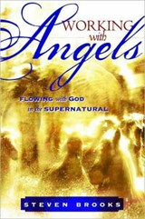 Working With Angels | Steven W. Brooks |